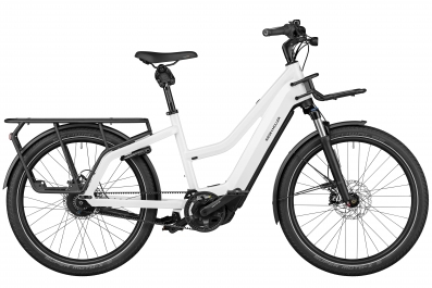 2020 Riese & Müller Multicharger Mixte GT Vario
